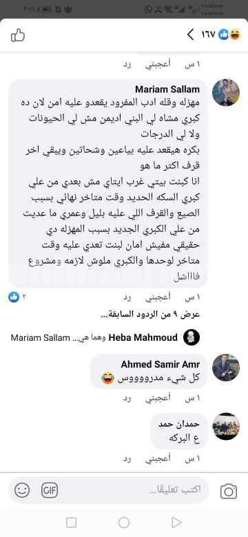 حمار يعبر سلم مشاه بالبحيرة
