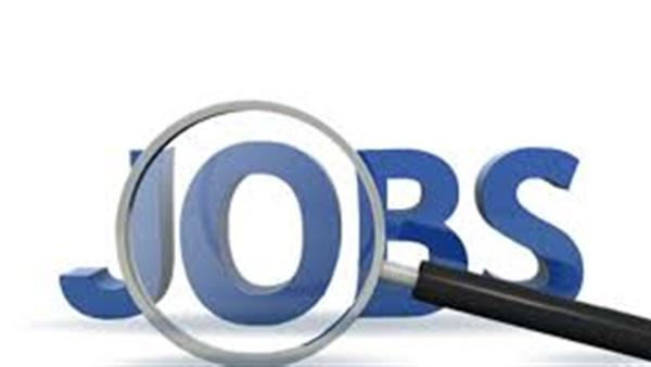 : وظائف خالية.. القوى العاملة تطرح فرص عمل براتب يصل إلى 6 آلاف جنيه